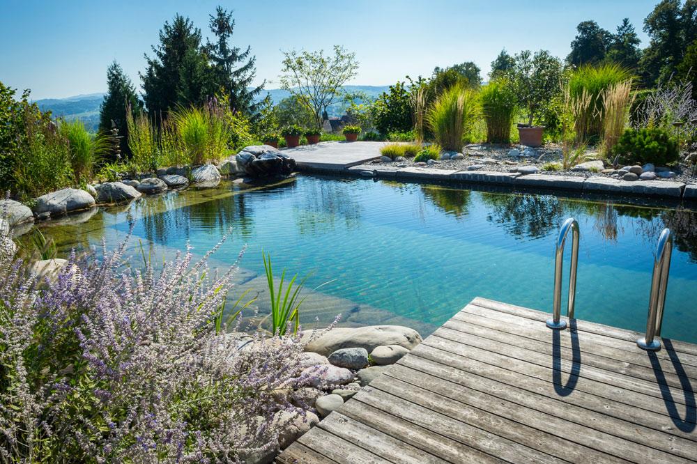 gartenteiche schwimmteiche franke garten und landschaftsbau wiefelstede oldenburg. Black Bedroom Furniture Sets. Home Design Ideas
